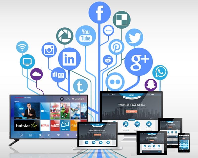 Media Distribution & Marketing